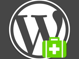 Help you find problem with your Wordpress