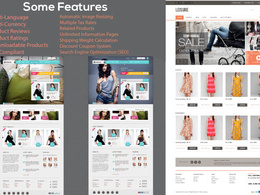 Design an amazing, beautiful, responsive & professional website