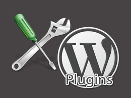 Provide you with custom WordPress Plugin