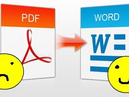 Convert or type/retype PDF/Image files into MS Word/MS Excel