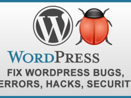 Fix wordpress bugs, errors, spam, security issues
