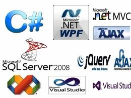 Make dynamic asp.net site