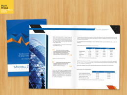Design your corporate document, business plan or annual report