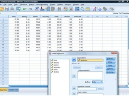 Produce a statistical analysis of your data