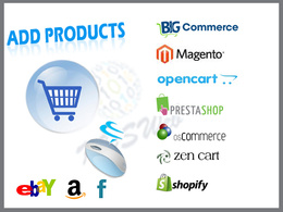 Upload / Add 100 products to your e-commerce website, eBay, Amazon or facebook