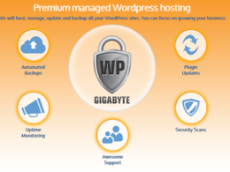 Host, backup and run monthly maintenance for your WordPress website for 12 months