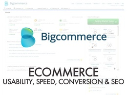 Do a full Usability, Speed & SEO Audit of your Bigcommerce store, inc recommendations