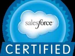 Provide 12 hours of Salesforce Development/Customization