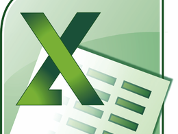Provide Ms excel work