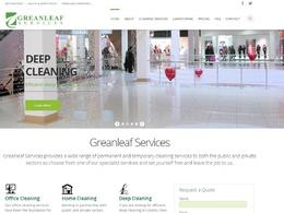 Design a professional custom responsive WordPress website