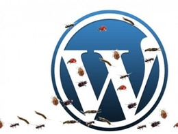 Fix your wordpress design mistakes or bug/errors