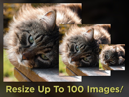 Resize (smaller) and Sharpen up to 100 images