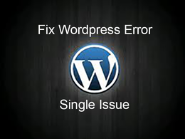 Help you to fix your wordpress site single issue