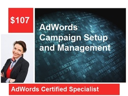 Professionally setup and manage your Google AdWords Campaign