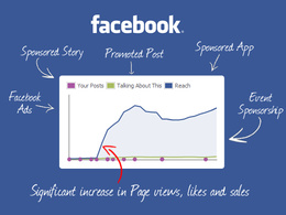 Provide custom Facebook emails / user IDs that generates laser target audience FB Ads