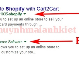 Optimize your Shopify Store SEO for higher Google Ranking