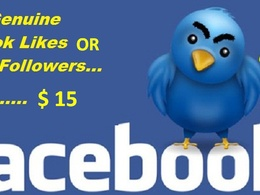 Provide 1,000 real and verified Facebook Likes Or 1000 verified Twitter Followers