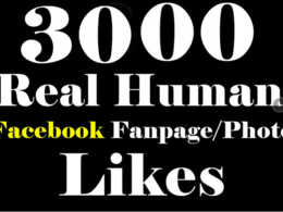Provide 3000 real Facebook Fanpage likes/fans