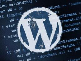Fix any single WordPress bug or error