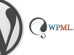 Setup wpml wordpress multilingual plugin