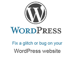 Fix a glitch, bug or error with your WordPress website