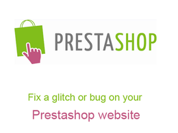 Fix a glitch, bug or error with your Prestashop website