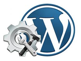Fix wordpress fixes theme issues website hacks, installation errors, plugins problems
