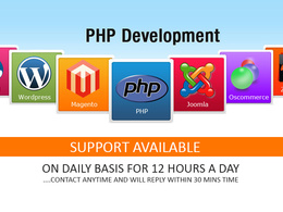 I can fix contact form 7, theme changes, css, wordpress update  in wordpress, php