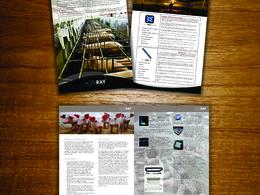 Make professional Brochure