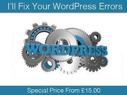 Fix your WordPress errors & issues. Make small design changes with CSS and fix themes