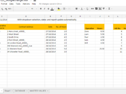 Design a professional template on google spreadsheet with formatting and formulae.