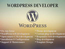 Customize wordpress, fix errors, edit theme or css