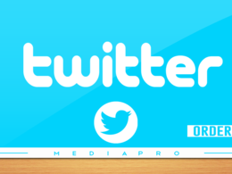 Add 1,000+  Twitter Followers to your profile to increase your audience