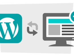 Develop a custom-built WordPress website including SEO & Plugins