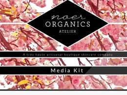 Create your press kit / media kit incl. design, content + PR