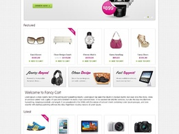 Develope a SEO ready responsive eCommerce website / Online shop