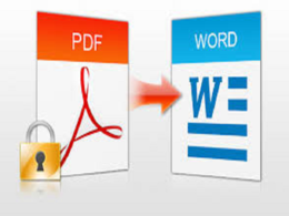 Convert 3 pages of PDF documents into Microsoft Word