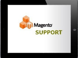 Provide one hour Magento support