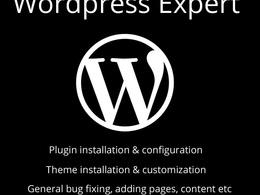 Do wordpress related tasks of 1 hour