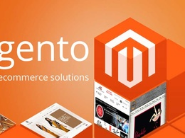 Design your Magento Online Store
