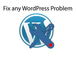 Fix  any WordPress related  problem