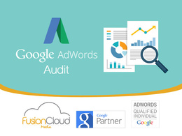 Audit your Google Adwords Account and provide a comprehensive optimisation report