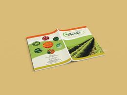 Design a professional flyer, brochure, leaflet