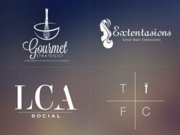 Design you a professional logo for your business with unlimited revisions