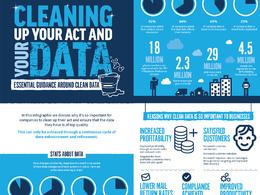 Professionally designed bespoke infographic