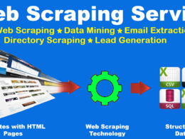 Provide you Web Scraping, Data Mining, Email List Services