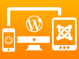Fix, Add or Edit any Issue, Features or Content in your WordPress or Joomla Website