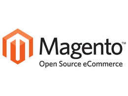 Customize and fix Magento websites