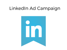 Setup and manage LinkedIn ad campaign for 5 days