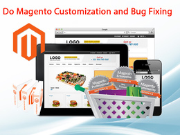 Do Magento Customization and Bug Fixing